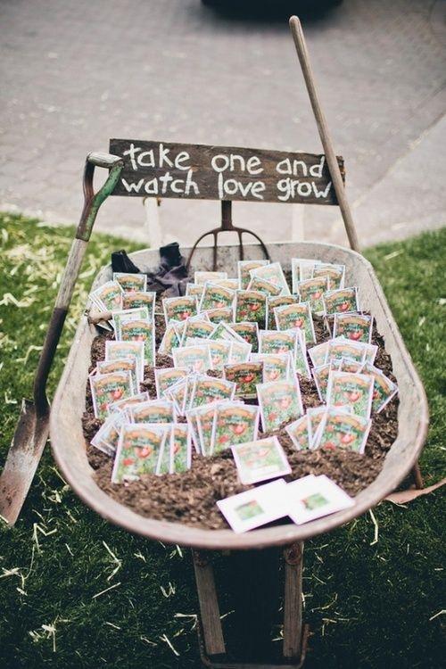 semillas para bodas